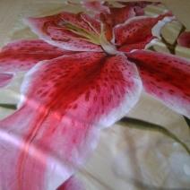 Занавеска для ванной с рисунком Красные лилии